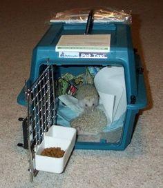 ♥ Pet Hedgehog ♥ hedgehog travel cage