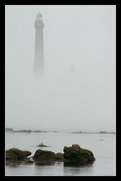© Paul Kerrien http://toilapol.net #Bretagne Finistère : 6 septembre : balade dans la brume le matin de Mélédan à Saint Michel : idéal pour les toiles d'araignée... retour vers 13 H 30 à Meledan, la brume se lève #phare #lighthouse