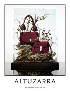 For its fall/winter 2016 advertising campaign, Altuzarra put the spotlight on its accessories. Design Set, Store Design, Display Design, Display Ideas, Still Life Photography, Fashion Photography, Mein Portfolio, Handbag Display, Fashion Still Life