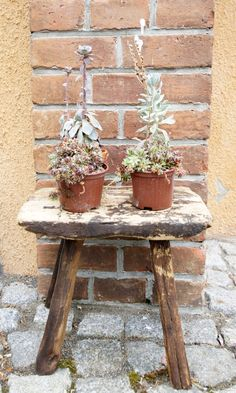 Kleiner, alter, wettergegerbter Holzschemel / old little stool boheme-living.com