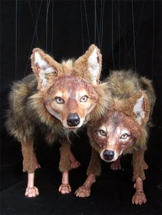 Marionette Foxes