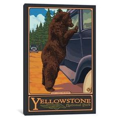 Shop for iCanvas 'U.S. National Park Service Series: Yellowstone National Park (Hungry Grizzly Bear)' by Lantern Press Canvas Print. Free Shipping on orders over $45 at Overstock.com - Your Online Art Gallery Store! Get 5% in rewards with Club O! - 21610158