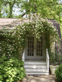 porch and climbing roses