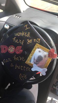 I love my graduation cap decoration! Dogs are life!