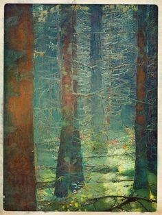 Digital Art — Studio Blog - Rick Stevens Art Rick Stevens, World Oil, Photo Scan, Cape Breton, Oil Painting Abstract, Oil Paintings, Pine Forest, Nova Scotia, Fine Art Paper