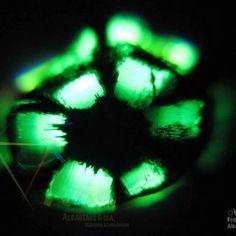 Trapiche of emerald
