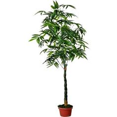 Artificial plant of Bamboo IG829-520C