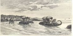LAOS - CROSSING THE RIVER RIDING ELEPHANTS IN NAM HOUNG - engraving from 1885