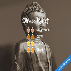 Stress Relief — Essential Oil Diffuser Blend