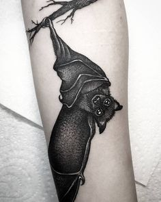 306 best bat tattoo images on pinterest in 2018 awesome tattoos rh pinterest com cute bat tattoo ideas cute little bat tattoo