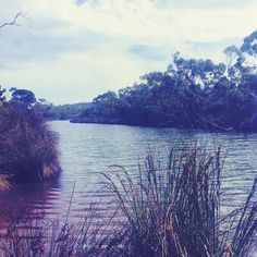 Down by the river..... #fishing #anglesea #girlstrip #dayout #adventure #roadtrip #calm #relaxing #fun by erin__maguire http://ift.tt/1KosRIg
