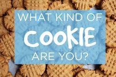what kind of cookie are you? i got chocolate chip cookie