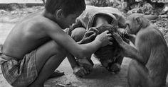 Three friends 2014 - by Tarun Chhabra  India