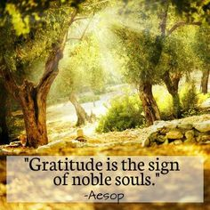 Gratitude is the sign of noble souls. Aesop
