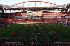 A Minha Chama: SL Benfica 1 sporting 1 (CN: 18-19 - 03J) Benfica Wallpaper, Football Stadiums, Baseball Field, Basketball Court, 18th, Sports, Stadium Of Light, Club, The World