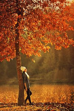 ♔ Time of year - Autumn