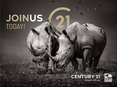 Our family through thick and thin!  Give us a call and join the Century 21 team of relentless franchisees. A Worldwide Leader In Real Estate in partnership with Save the Rhino International  Buy | Sell | Rent www.century21.co.za www.savetherhino.org/ #C21 #Leaders #buy #sell #rent #ENERGACITY #support #worldwideleader #givingback #SAVETHERHINO #franchise Save the Rhino International Thick And Thin, Save The Rhino, Relentless, Property For Sale, 21st, Join, Buy And Sell, Real Estate