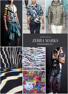 ZEBRA MARKS » Faith Connexion / Louis Vuitton / Tiger of Sweden / Nicholas Ballesteros / Vivid Zebra 1 by Michele Tozzi / Seamless Colourful Zebra Pattern by Eduardo Doreni / Faith Connexion