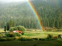 Have you decided to relocate in Montana? If it is a yes, then it is worth telling you that properties and Eastern Montana Ranches for Sale offer incredible scenery of mountains and fishing in the river Yellowstone, a lifetime experience that you will never forget in your life.