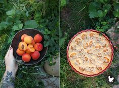 Eggs, Apple, Baking, Fruit, Breakfast, Food, Summer, Apple Fruit, Morning Coffee