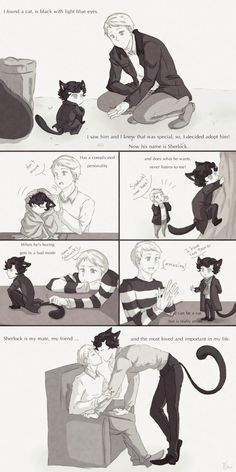 My black cat, Sherlock by Nihui.deviantart.com on @deviantART