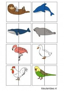 Dierenspel voor kleuters, kleuteridee.nl , animal match for preschool, free printable 4.