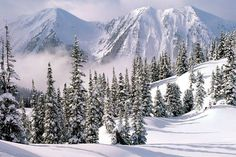 p-winter-wonderland-1199277201-1024x768-winter-wonderland_54_990x660_201404221220.jpg (990×660)