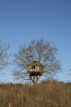 Treehouse Fort near Beneden Lent, Nijmegen NetherlandsSubmitted...