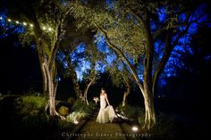 Wedding Photography in Napa, CA | Christophe Genty Photography