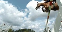 The Longines Royal International Horse Show at Hickstead
