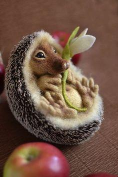 Plstený  ježko