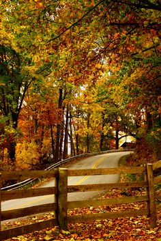 #Autumn, please come soon! :  The Road to Home Kentucky, USA | by Kena