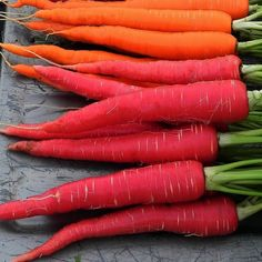 Kyoto Red Carrot Japanese heirloom 100 seeds non GMO by SmartSeeds, $2.99