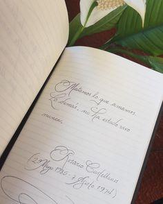 Matamos lo que amamos... #rosariocastellanos (25-mayo-1925/7-agosto-1974) by histcotidianas