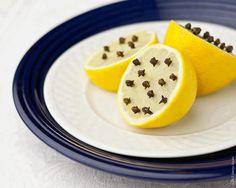Whole Cloves & Lemon to keep away flies! NOT! While he flies didn't go near the lemon the did go near the food....EPIC FAIL👎 Fly Repellant