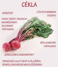 Életmód cikkek : Zöldség és gyümölcsök hatásai Stop Eating, Medicinal Plants, Healthy Nutrition, Good To Know, Healthy Lifestyle, The Cure, Vitamins, Healthy Living, Health Fitness