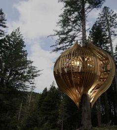 Treetop restaurant