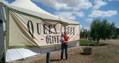 The Queen Creek Olive Mill Tour « « Arizona Mama Arizona Mama