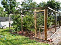 bird netting room