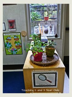 preschool science center; love the plants and the bags in the window displaying different science items