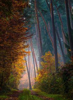November Breath by Daniel Herr on 500px  )
