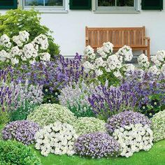 12 sturdy perennials for the garden - Bee-friendly herbaceous border, 21 plants - Landscape Design, Garden Design, Herbaceous Border, Hydrangea Care, Bee Friendly, Low Maintenance Landscaping, Real Plants, Front Yard Landscaping, Belle Photo