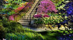 Papel de Parede Lindo Jardim Florido