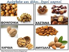 ξηροί καρποί Learn Greek, Dog Food Recipes, Crafts, Special Education, Kindergarten, Spring, Kids, Food, Manualidades