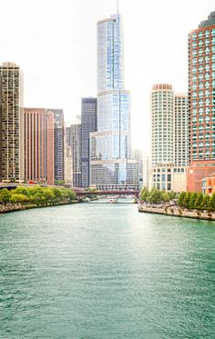 Trump Tower, Chicago | Illinois (by Jeremy Vandermeer)