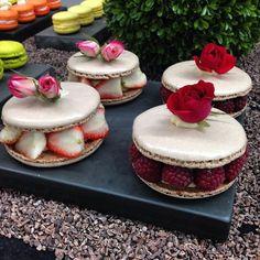 Diego Lozano Macarons!!! Amazing