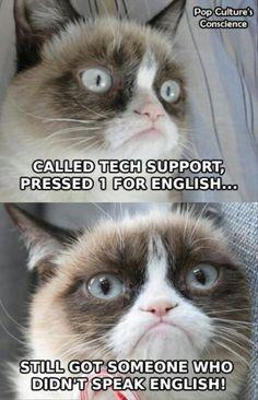 Grumpy Cat hates calling tech support