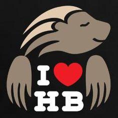 25 Best Honey Badgers images in 2014   Honey badger, Honey
