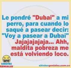 Vámonos a pasear a Dubai 😂😂😂 Dubai, Humor Mexicano, Decir No, Instagram, Funny Humor Quotes, Funny Memes, Good Mood, Be Nice, Pretty Quotes