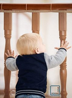 Roving Cove® Safe Rail(TM) - 5ft x 3ft - INDOOR Balcony and Stairway Safety Net - ALMOND color - Banister Stair Net - Child Safety; Pet Safety; Toy Safety; Stairs Protector, http://www.amazon.com/dp/B01AER8AD2/ref=cm_sw_r_pi_awdm_OcIuxb161T0BC
